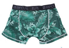 Трусы RIP CURL Options Boxer Amazon Green